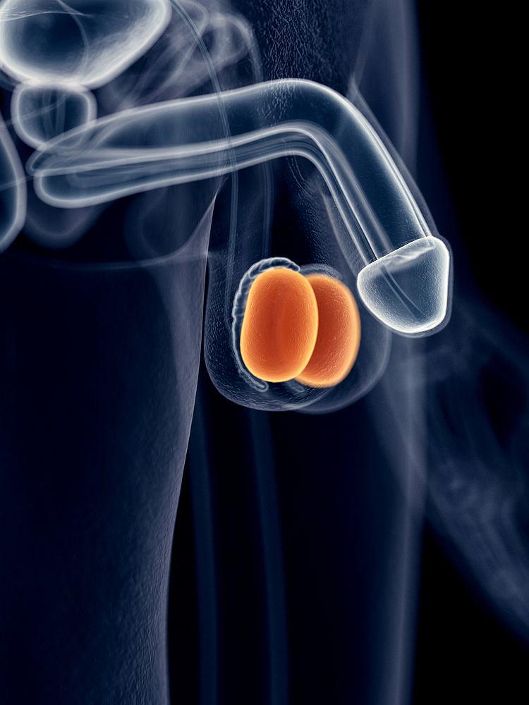 niewydolność hormonalna jąder jest hipogonadyzmem