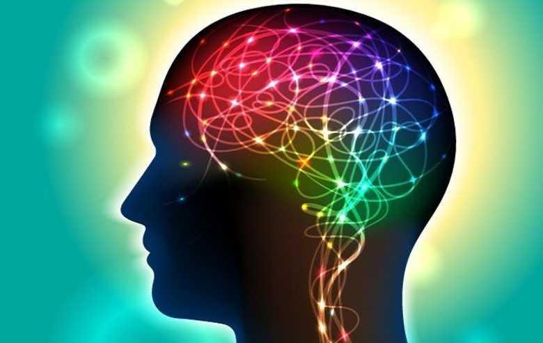 Przemijająca niepamięć ogólna jest spowodowana nieprawidłowym funkcjonowaniem wymienionego wyżej kręgu neuronalnego, którego prawidłowa czynność jest konieczna dla zapobieżenia powstawaniu błędnych engramów pamięciowych.